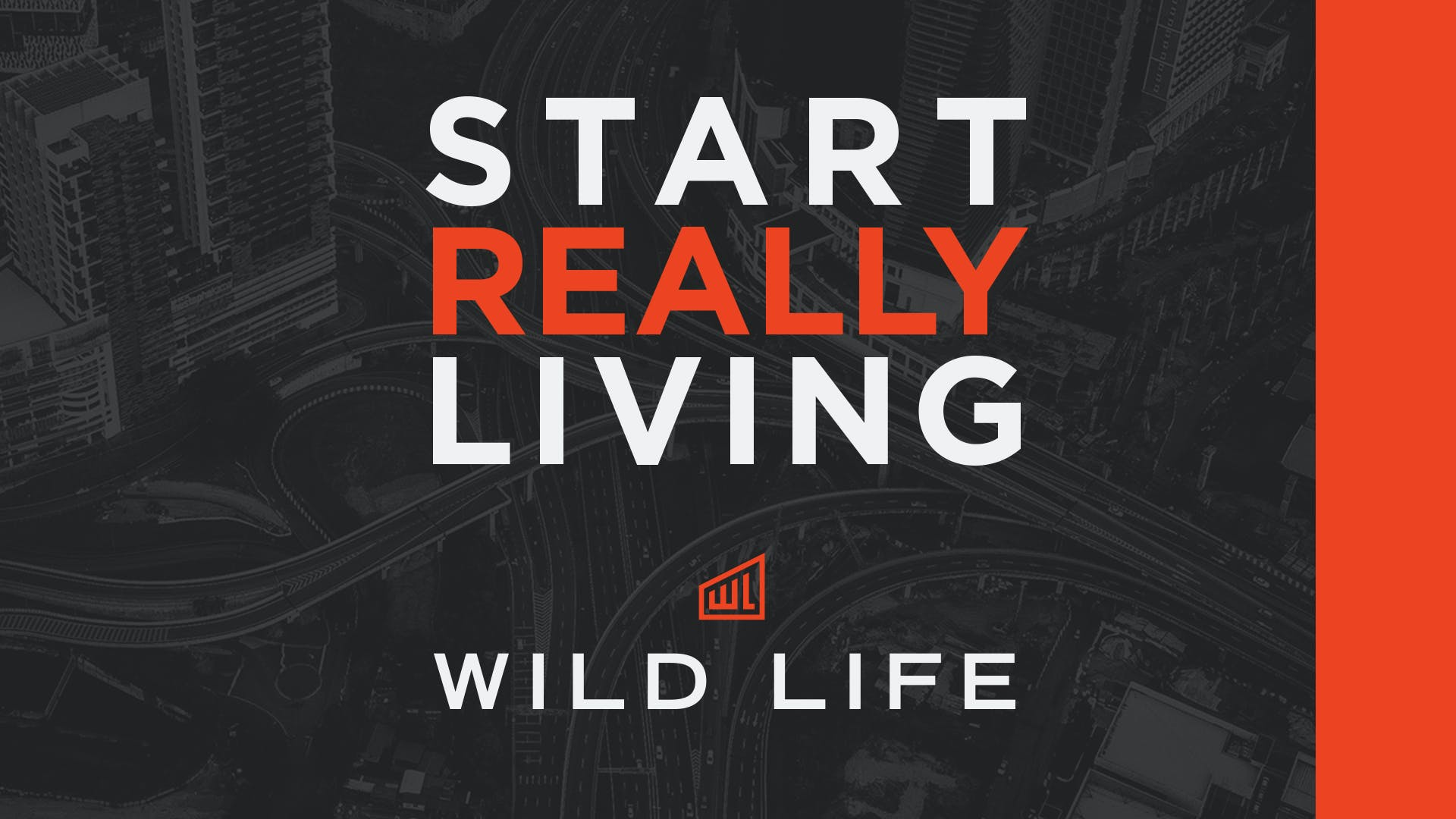 Everything LifeGroup Leaders Need to Know About Wild Life